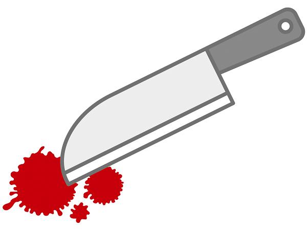 逗子ストーカー殺人事件|探偵が関わった大きな事件